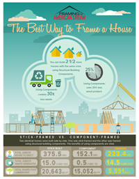 Framing the American Dream Inforgraphic